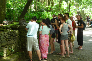 monkeyforest8.jpg