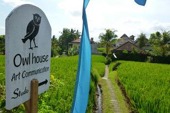 owl-house.jpg