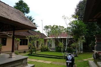pacung-tree2.jpg